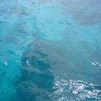 海が青くなってきた